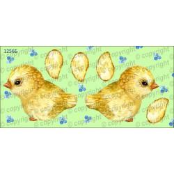 Велюрик цыплёнок