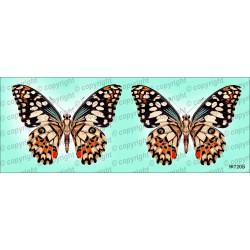 Велюрик бабочка